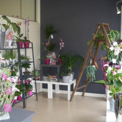 La boutique AMELIMELO Fleurs